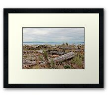 Boundary Bay Framed Print
