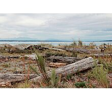 Boundary Bay Photographic Print