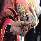 The Miniature Owl by ivDAnu