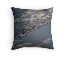 Michigan Shore Throw Pillow