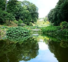 Trebah Gardens, Cornwall by Ludwig Wagner