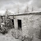 Building in Snow by Milo Denison