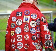 The Baseball Fan by Frank Romeo