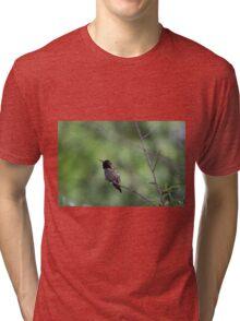 A Huggie Tri-blend T-Shirt