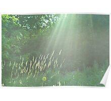 Sunlight - London Poster
