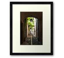 To the Ancient Garden Framed Print