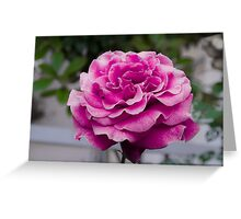 Roses are Pink Greeting Card