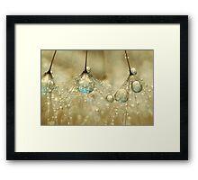 Golden Sparkles Framed Print