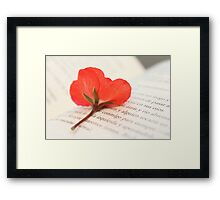 Red flower and book Framed Print