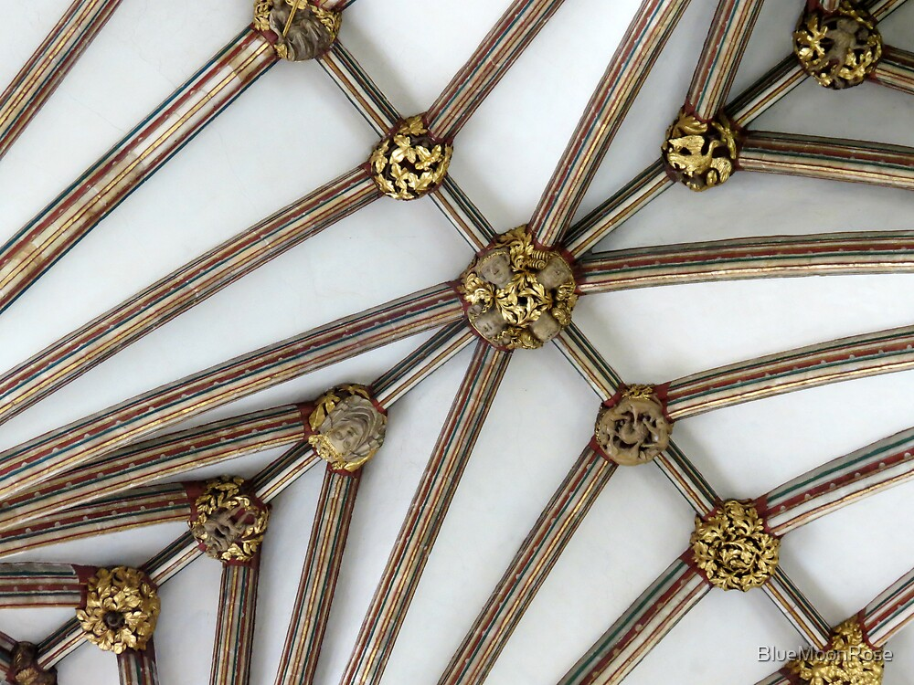 Vaulted Ceiling, Exeter Cathedral, Devon by BlueMoonRose