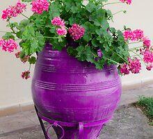 Purple Dream by Sotiris Filippou