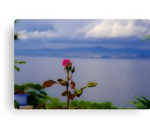 Beauty of Rose Canvas Print