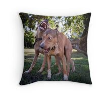 Dogs with game face on .26 Throw Pillow