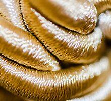 Golden Art by Sotiris Filippou