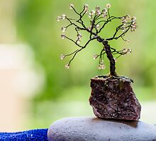 Little Tree by Sotiris Filippou