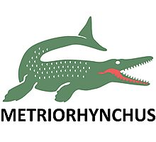 Metriorhynchus Photographic Print