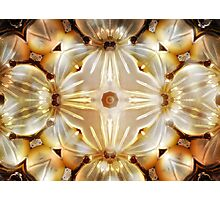 Mother of Pearl 3 Photographic Print