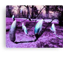 Magnolias in an Alien World Canvas Print