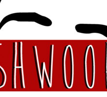 Team Shwoop Sticker