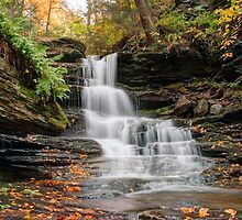 Autumn Below the Nameless Forgotten Waterfall by Gene Walls