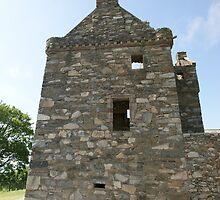 Carsluith Castle, Scotland by Allen Lucas