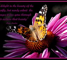 We delight in the beauty of the butterfly by Jan  Tribe