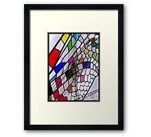 6_10_04_P1230065_Dragon_Fly_Pattern_2 Framed Print