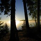 Sunrise and Mist on Sysladobsis Lake by MaryinMaine
