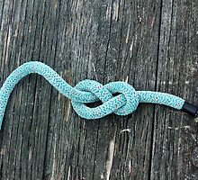 Blue Knot by daniseas