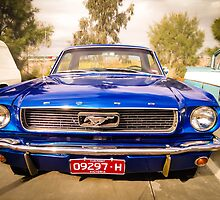 Mustang by Andrew Dodds