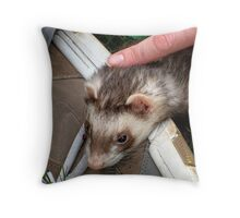 Captain Jack, Our Ferret Throw Pillow