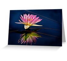 Reflections of a Waterlily Greeting Card