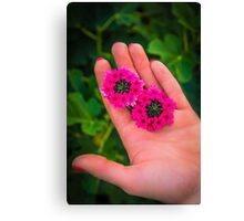 Beauty in Her hands Canvas Print