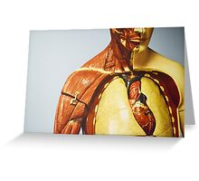 Learn Anatomy! - Science Museum Greeting Card