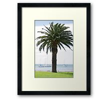 Palm Paradise Framed Print