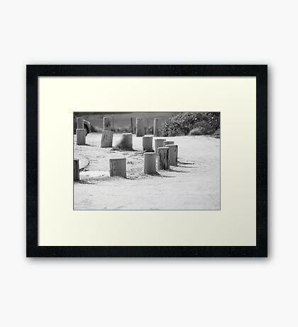 Black and White Stump Framed Print