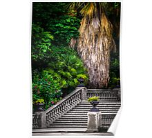 Stairs to Nature Poster
