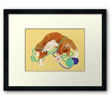 Yarncat Framed Print