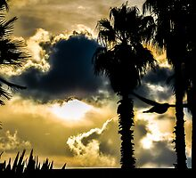 The Beauty of Nature by Sotiris Filippou