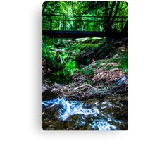 Secret Path Canvas Print