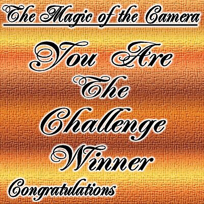 Challenge winner, The magic of the camera by LoneAngel