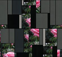 Pink Roses in Anzures 6 Art Rectangles 7 by Christopher Johnson