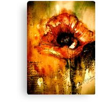 Quiet Things... Canvas Print