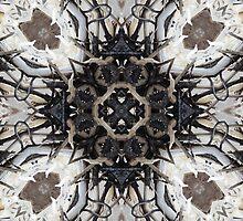 Wildwood 3 by Shawna Rowe