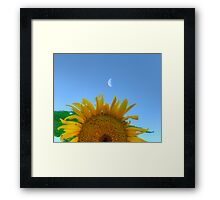 Sun & Moon Framed Print