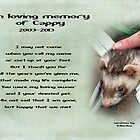 In memory of cappy by vigor