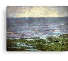 Low Tide at Sunrise Canvas Print