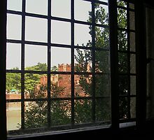 Looking out at the Castelvecchio by lezvee