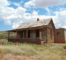 Home on the Range--Abandoned Home in Cuervo, New Mexico by CandyApplCrafts