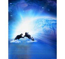 Orca  Dance Photographic Print